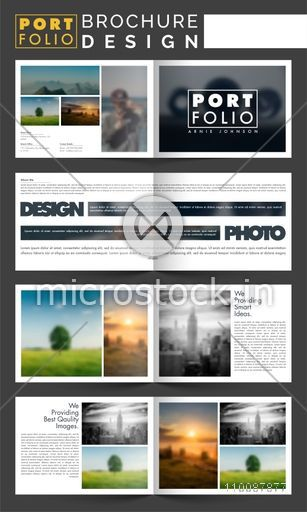 Professional Portfolio Brochure Design with Cover, Inner or Back Pages Presentation.