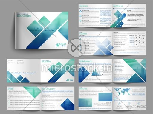 Professional Modern Educational Brochure Set with Cover, Inner or Back Pages Presentation.