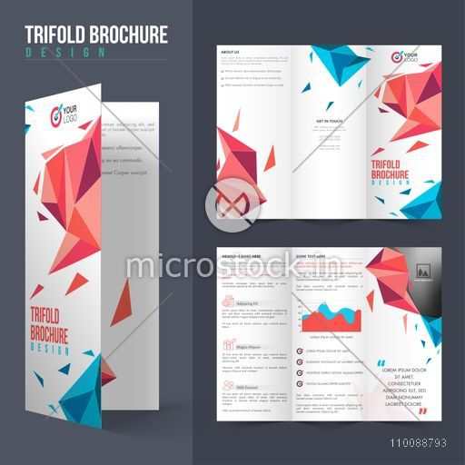 Professional Tri-Fold Brochure layout with modern abstract design and space for your images.