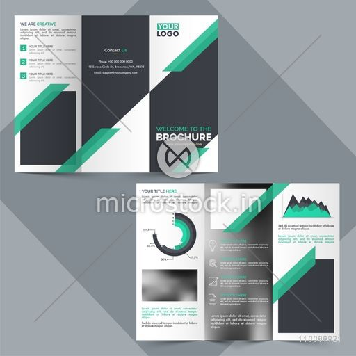 Two Page, Tri-Fold Business Brochure design with statistical infographic elements and space for your images.