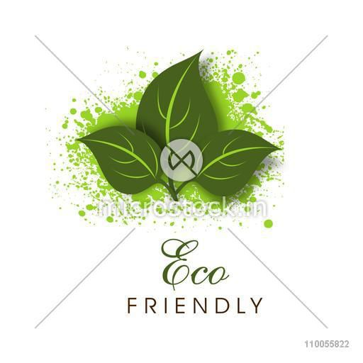 Green leaves on splash with Eco Friendly text for Save Nature purpose on white background.