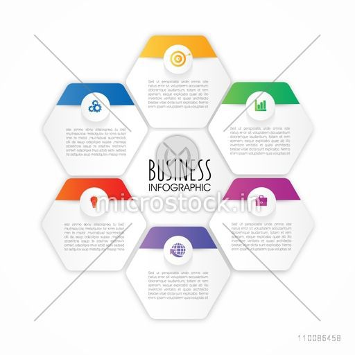 Creative infographic elements with web symbols in hexagon shape on white background for Business reports and presentation.