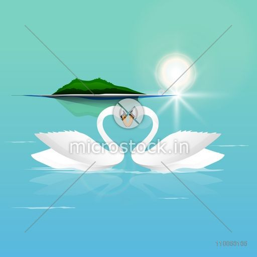 Beautiful white swan couple in love on nature background for Happy Valentines Day celebration.