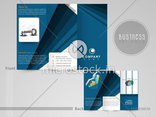 Professional three fold flyer, template or corporate brochure with infographic chart designs for business presentation.