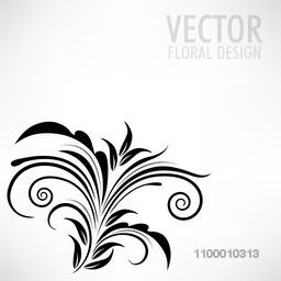 Beautiful black floral design. Vector illustration.