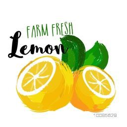Farm Fresh Lemons made by watercolor brush stroke on white background, Hand Drawn vector illustration for Healthy Food concept, Can be used as Sticker, Tag or Label design also.