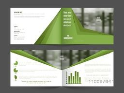 Modern Professional Business Brochure Set with Front, Inner or Back Pages Presentation and space to add images.