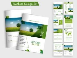 Creative Brochure design set with front, back and inner pages presentation for your Business.