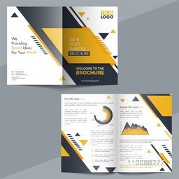 Professional abstract Brochure layout with infographic elements for your Business Reports and Presentation.