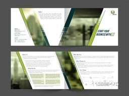 Professional Business Brochure Set with Front, Inner or Back Page Presentation.