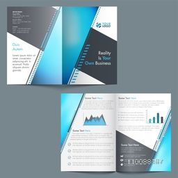 Professional Brochure, Template design with statistical elements for your Business.