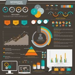 Various colorful infographic elements including statistical charts and graphs for presenting your professional data effectively.