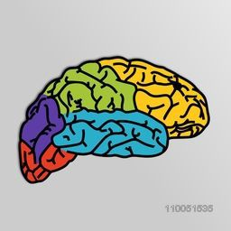 Colourful image of human brain with its part on grey background.