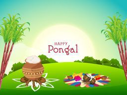 South Indian harvesting festival, Happy Pongal celebrations with sugarcane, rice in traditional mud pot and religious offerings for worship in morning view.