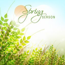 Spring season greeting card design with green plants on shiny background.