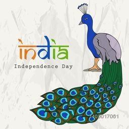Indian National Bird Peacock for Independence Day celebration.