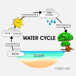 Illustration of diagram showing water cycle for World Water Day concept.