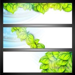 Nature and Eco website header or banner set with green leaves.