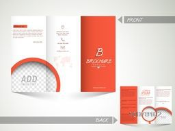 Front and back page presentation of creative Trifold Brochure, Template or Flyer design with space to add images for your Business.