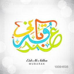 Colorful Arabic Islamic Calligraphy Text Eid-E-Qurbani on shiny background for Muslim Community, Festival of Sacrifice Celebration, Vector greeting card design.