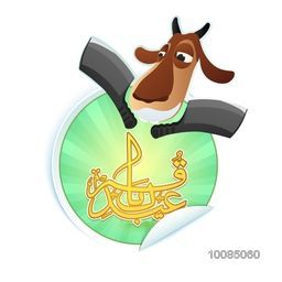 Goat Face with Cleaver Knife, Vector Sticker, Tag or Label, Glossy Arabic Calligraphy Text Eid-E-Qurbani for Muslim Community, Festival of Sacrifice, Eid-Al-Adha Mubarak.