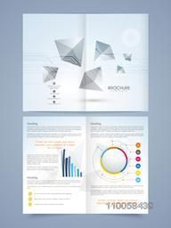 Two pages business brochure or flyer with statistics and infographic charts.